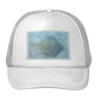 Fresh Water Stingray Baseball Hat
