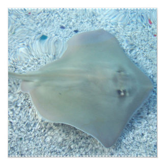 Fresh Water Stingray Invitations