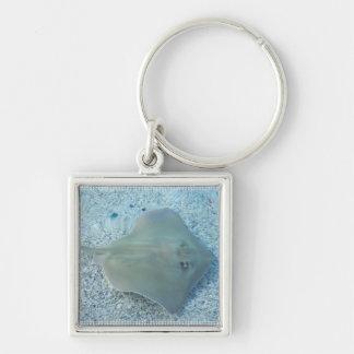 Fresh Water Stingray Keychain