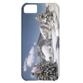 Freshly Fallen Snow iPhone 5C Covers