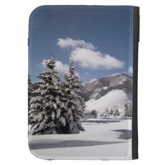 Freshly Fallen Snow Case For The Kindle