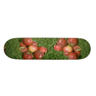 Freshly harvested apples, Nova Scotia, Canada Skate Boards
