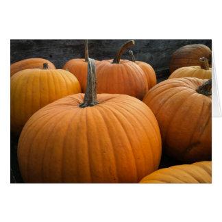 Freshly-Harvested Autumn Orange Pumpkins Card