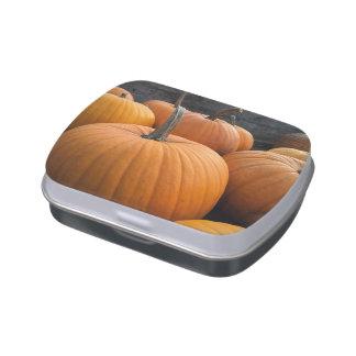 Freshly-Harvested Autumn Orange Pumpkins Jelly Belly Tin