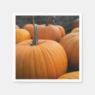 Freshly-Harvested Autumn Orange Pumpkins Paper Napkin