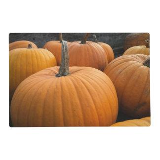 Freshly-Harvested Autumn Orange Pumpkins Placemat