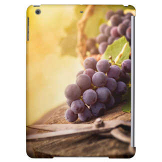 Freshly Harvested Grapes iPad Air Case