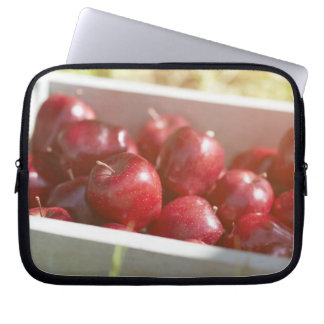 Freshly picked apples in tray. computer sleeve