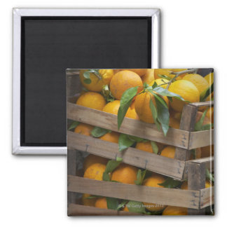 freshly picked oranges 2 inch square magnet