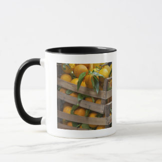 freshly picked oranges mug