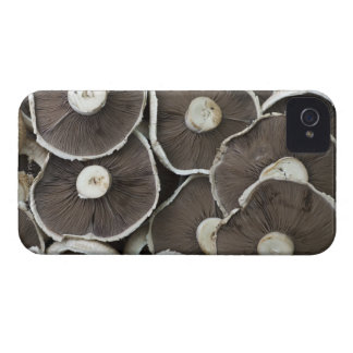 Freshly picked Portobello field mushrooms on Case-Mate iPhone 4 Case