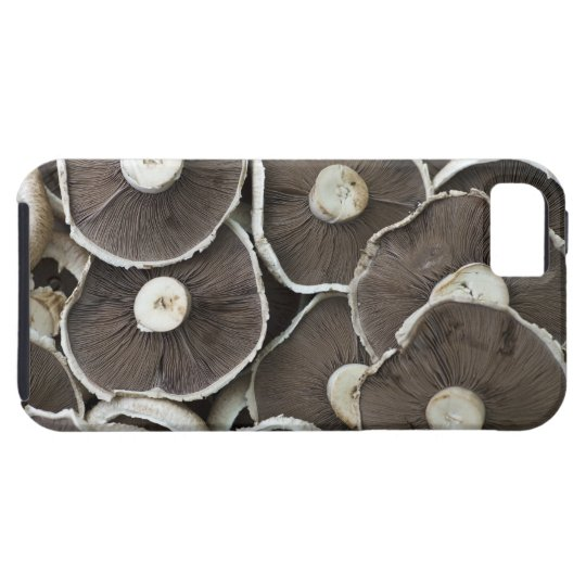 Freshly picked Portobello field mushrooms on iPhone SE/5/5s Case
