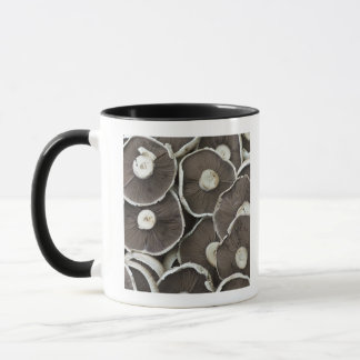 Freshly picked Portobello field mushrooms on Mug