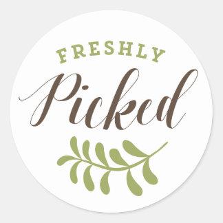 Freshly Picked Retro Typography Sticker