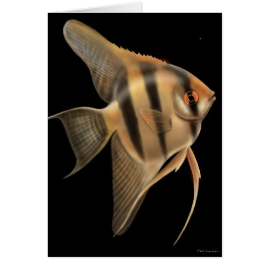 Freshwater Angelfish Card