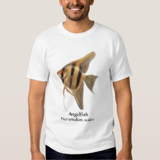 Freshwater Angelfish T-Shirt