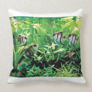 Freshwater Angelfish Throw Pillow