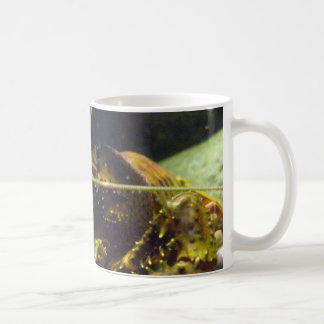 Freshwater crayfish coffee mug