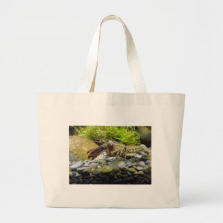 Freshwater crayfish large tote bag