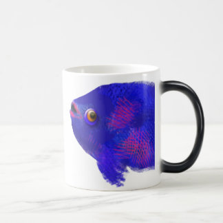 Freshwater Fish Magic Mug