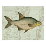 Freshwater Fish on Map Poster