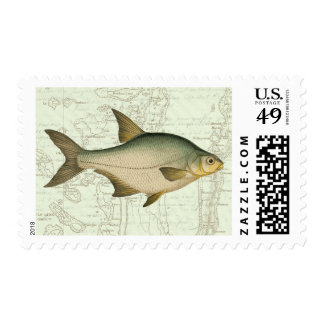 Freshwater Fish on Map Stamp