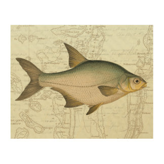 Freshwater Fish on Map Wood Wall Art