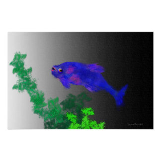 Freshwater Fish Print
