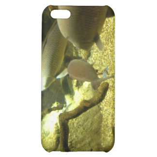 Freshwater Perch Fish iPhone Case iPhone 5C Cases