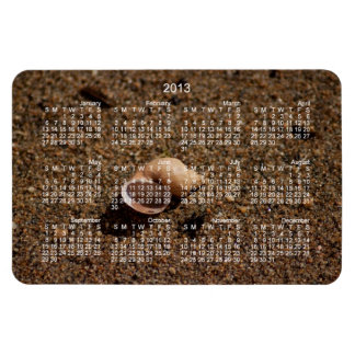 Freshwater Snail Shell; 2013 Calendar Magnet