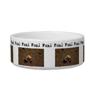 Freshwater Snail Shell; Customizable Bowl