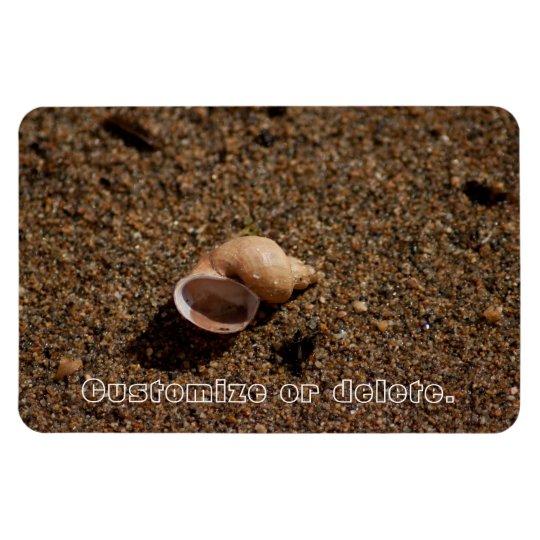 Freshwater Snail Shell; Customizable Magnet