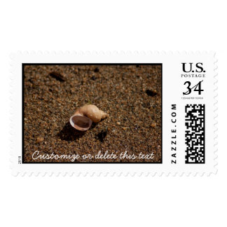 Freshwater Snail Shell; Customizable Postage