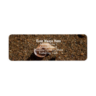 Freshwater Snail Shell Label