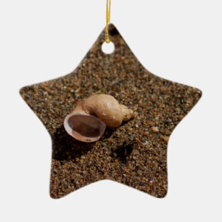 Freshwater Snail Shell; No Text Christmas Ornament