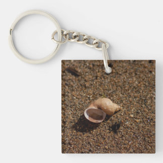 Freshwater Snail Shell; No Text Keychain