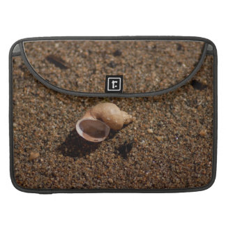 Freshwater Snail Shell No Text Sleeve For MacBook Pro