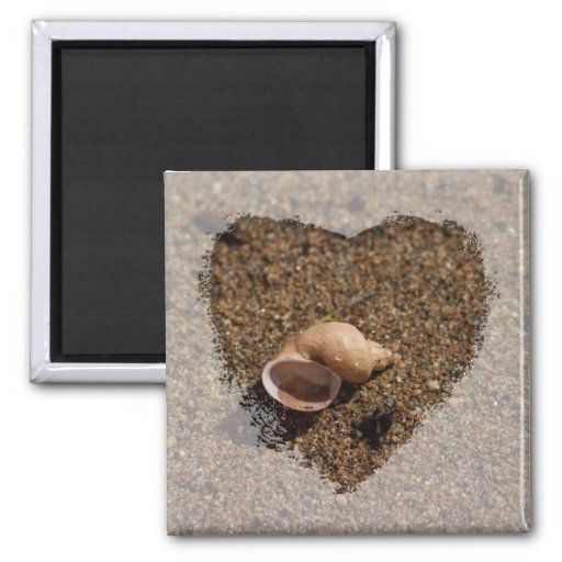 Freshwater Snail Shell; No Text 2 Inch Square Magnet