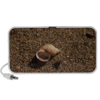Freshwater Snail Shell No Text Notebook Speakers