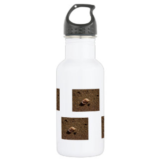 Freshwater Snail Shell; No Text Water Bottle