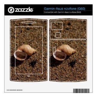 Freshwater Snail Shell Garmin Asus Nuvifone Skins
