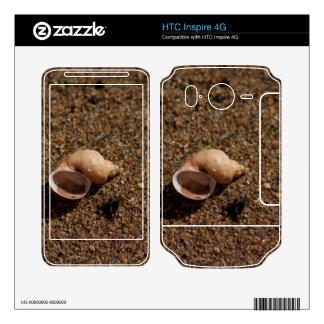 Freshwater Snail Shell Skin For HTC Inspire 4G