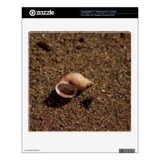 Freshwater Snail Shell FreeAgent Desk Skins