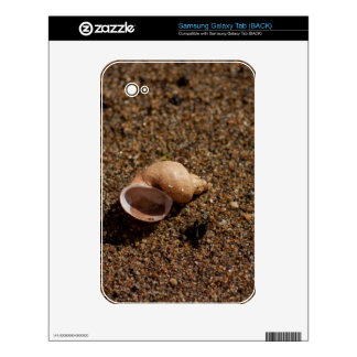 Freshwater Snail Shell Samsung Galaxy Tab Skins