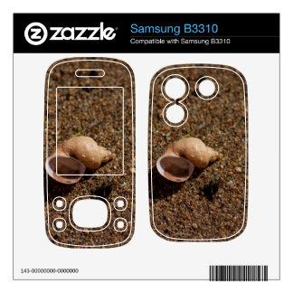 Freshwater Snail Shell Samsung B3310 Decal