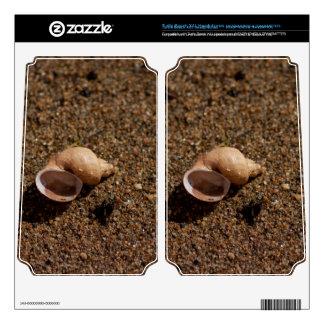 Freshwater Snail Shell Turtle Beach X41 Skins