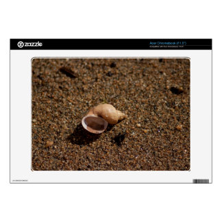 Freshwater Snail Shell Decal For Acer Chromebook