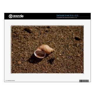 Freshwater Snail Shell Skin For Small Netbook