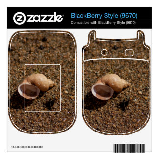 Freshwater Snail Shell Decals For BlackBerry