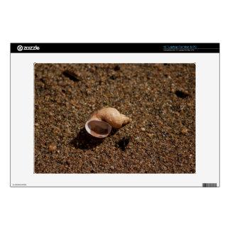"""Freshwater Snail Shell Skin For 13"""" Laptop"""